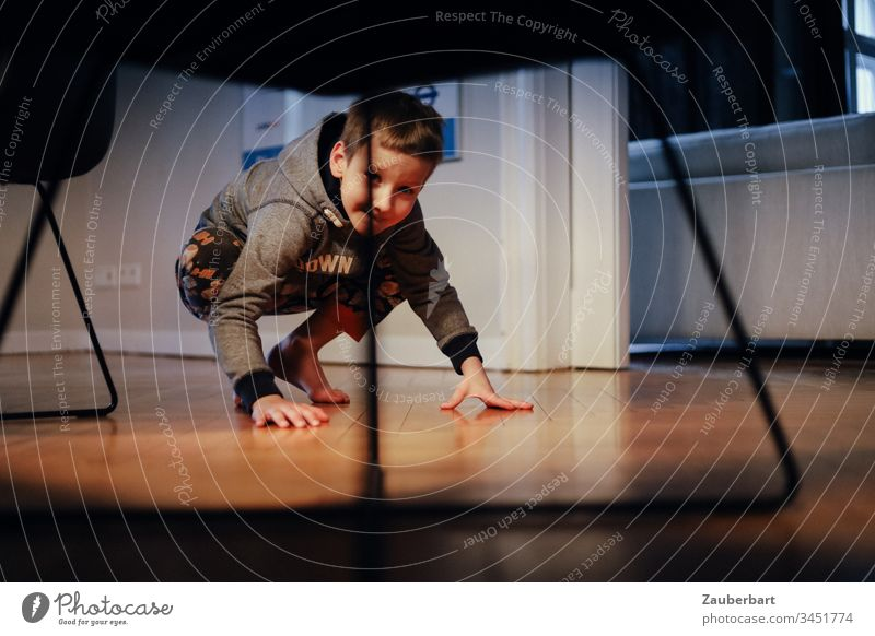 Boy playing squatting looks under a table with modern chairs Boy (child) Child Infancy Search Hide Flat (apartment) Living room Playing Interior shot