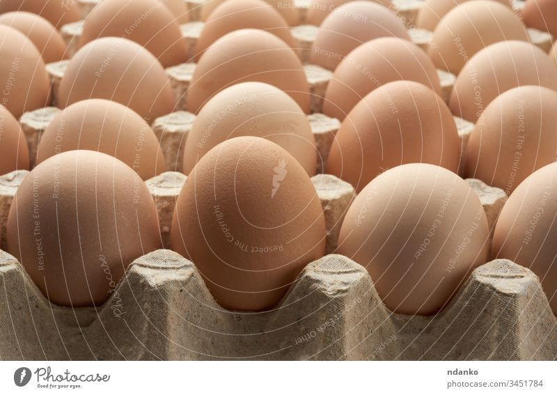 whole round raw brown homemade chicken eggs in a paper tray agriculture animal background bird breakfast case closeup color cuisine diet dinner domestic easter
