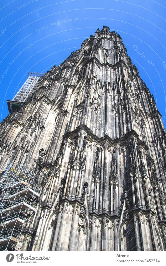 Bau an der Kunst: Renovation work on Cologne Cathedral Tower Tall Day Blue Deserted Religion and faith Worm's-eye view Blue sky Town Neutral Background Church