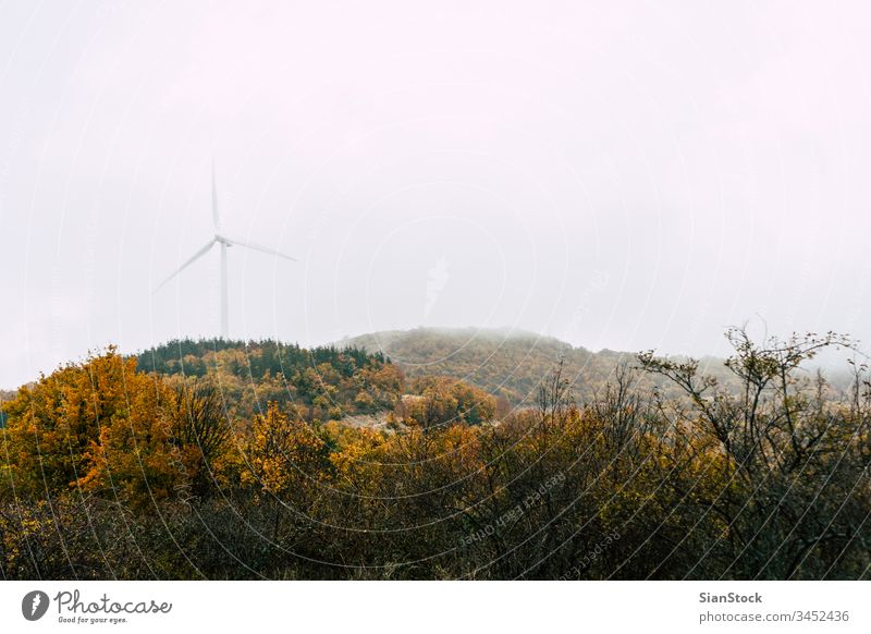 Wind power generator in mountain with fog wind energy forest autumn trees turbine windmill sunrise renewable sky sunset electricity technology green blue plant