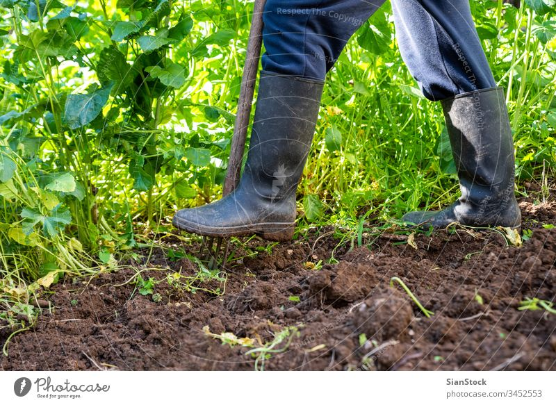 Man is digging spring soil with spading fork. Work in a garden rake spade farmer man boot hobby boots agriculture dirt shovel gardening cultivation tool