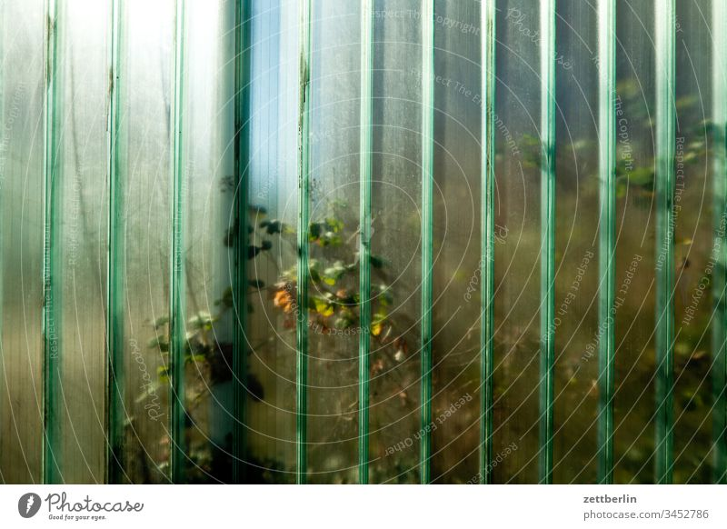 Glass wall on the outside spring Spring Deserted Copy Space Border Wall (barrier) Transparent transparent translucent Real estate neighbourhood Neighbor