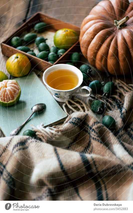 Autumn still life. Tea, pumpkin and and plaid lifestyle fall concept cup autumn background season cozy blanket thanksgiving october wooden calm home comfort