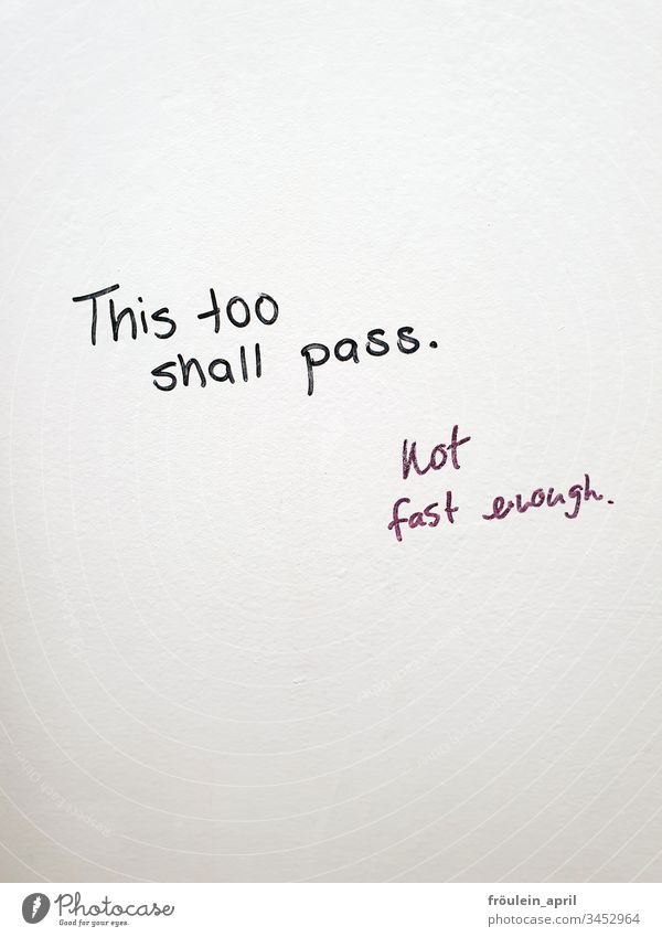 This too shall pass - Text on white wall Communication White Emotions Wishes Hope Black Characters Deserted Letters (alphabet) Colour photo Neutral Background