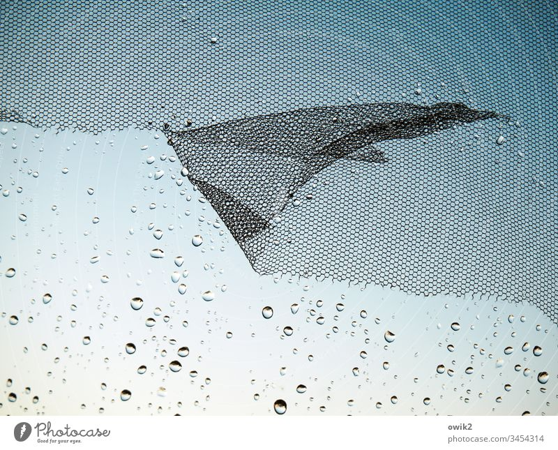 wing system Window Window pane Gauze Fly screen Glass Plastic Water Drops of water Rain raindrops a lot Small Near Diminutive Judder defective shredded worn-out