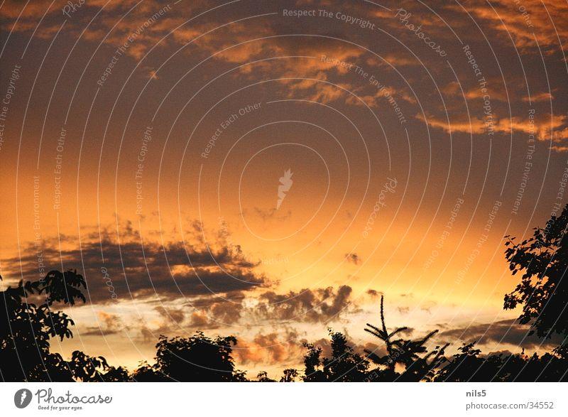 evening lights Clouds Twilight Orange-red Moody Harmonious Dusk Sky finale