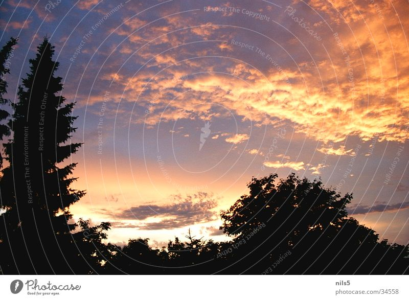 Sky Clouds Lamp Moody Bright spot