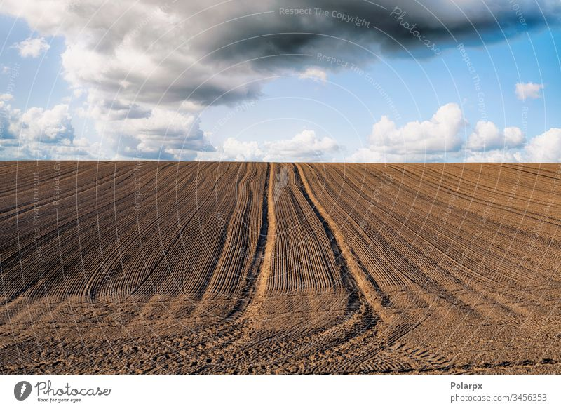 Plowed field with tracks under a blue sky sowing tractor growing ploughed view natural dirty harvest outdoors country furrow seed farming texture food seedbed