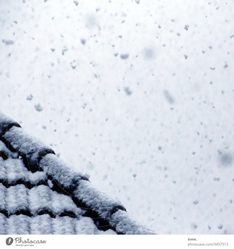 Winter in spring, one morning long | climate change Sky Inspiration Snow Roof roof tiles Roofing tile snowflakes snow-covered