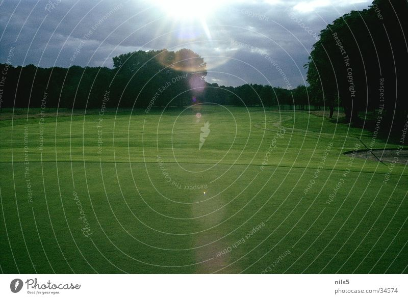 golf course Green Bad weather Playing Places Decent Landscape Idyll Beautiful weather Clouds Golf