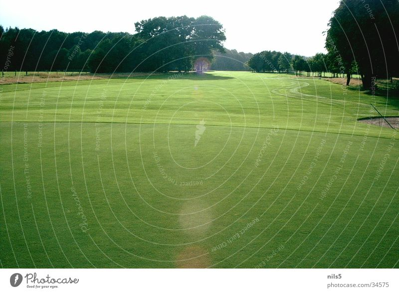 Sun Green Summer Sports Bright Places Golf