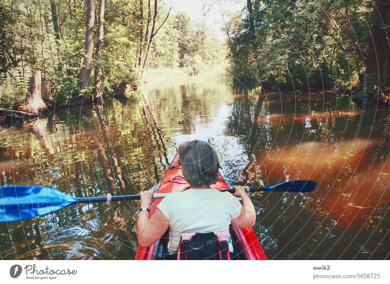 Row back Woman Sports Athletic Leisure and hobbies Rowing Paddling Kayak Canoe Canoe trip Vacation & Travel Water Nature Aquatics Trip Summer Exterior shot