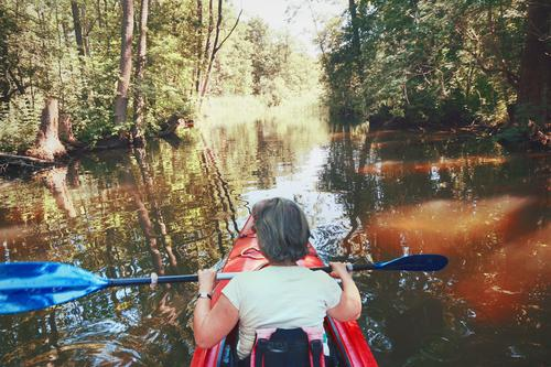 She's rowing back Woman Sports Athletic Leisure and hobbies Rowing Paddling Kayak Canoe Canoe trip Vacation & Travel Water Nature Aquatics Trip Summer