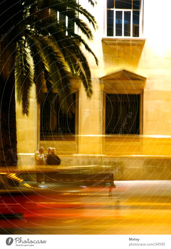 Streets of Malaga Dusk Man House (Residential Structure) Spain Andalucia Palm tree Window Long exposure To talk Car Blur