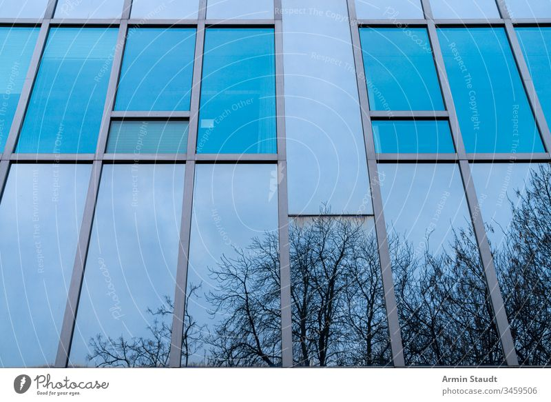 blue glass facade with reflecting trees Abstract Architecture background Blue Building Business City Construction Company Design Detail Flat (apartment)