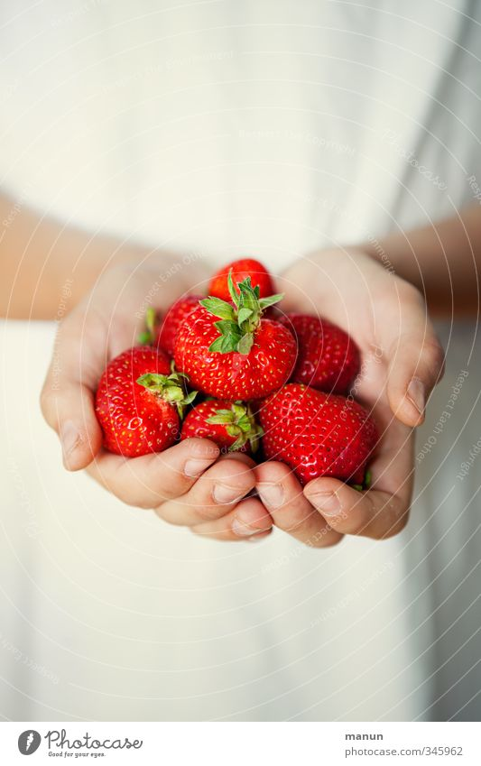 Hand Red Healthy Natural Food Fruit Glittering Illuminate Fresh Fingers Nutrition Sweet To enjoy To hold on Appetite Delicious