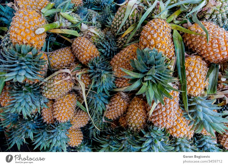 Pineapples negombo sri lanka food healthy fruit yellow pineapple tropical juicy color diet plant fresh nature raw nutrition market freshness closeup delicious