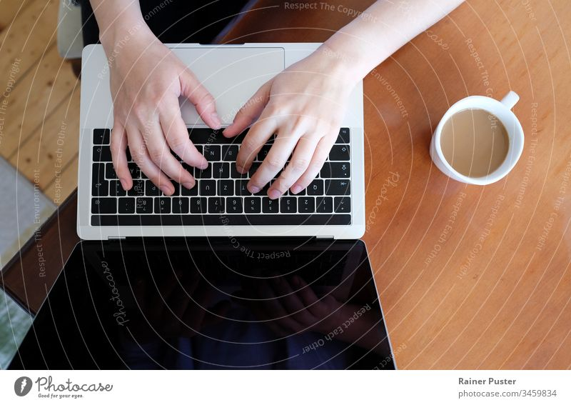 Closeup of hands of a woman typing on a laptop at home business coffee communication computer desk entrepreneur female freelancer home office indoor indoors