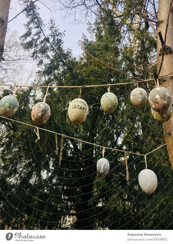 Easter eggs happy easter Egg chain Easter decoration Nature Spring