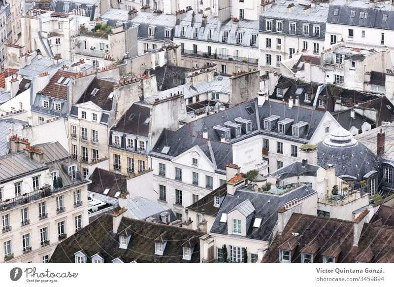 rooftops of the city of Paris France Gothic architecture art boulevard building canvas church cityscape composition depiction europe house landscape no person