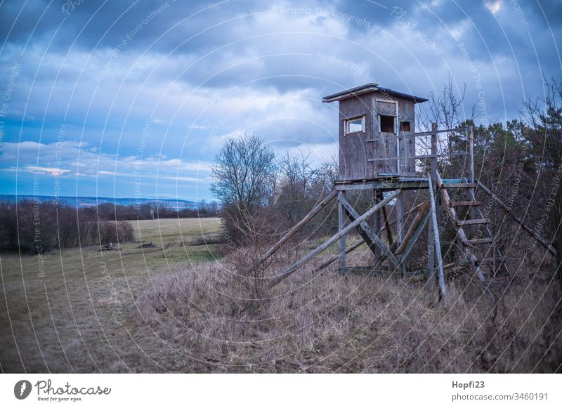High seat at the edge of the forest with view into the distance. Hunting Blind Landscape Nature Field Colour photo Clouds Far-off places Blue Day Calm Deserted