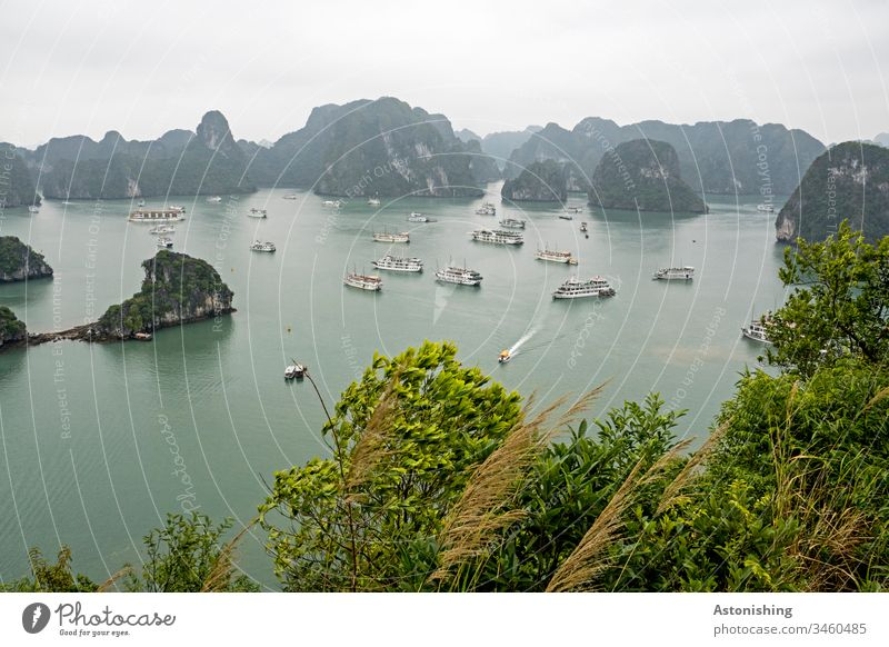 Boats in Ha Long Bay, Vietnam Exotic Copy Space top Tall Steep Virgin forest Colour photo Day Green Sand Beach leaves Forest Sky Limestone ocean voyage