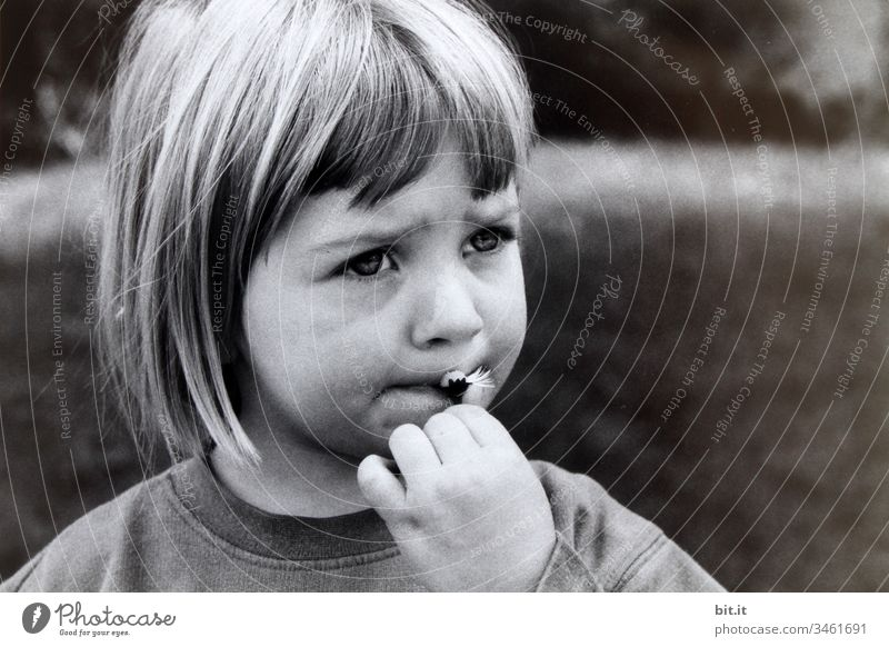 Girl eating daisies in the garden Playful Sweet Life upbringing Parenting Children's game portrait Think Concern anxious Sadness sad Infancy Human being