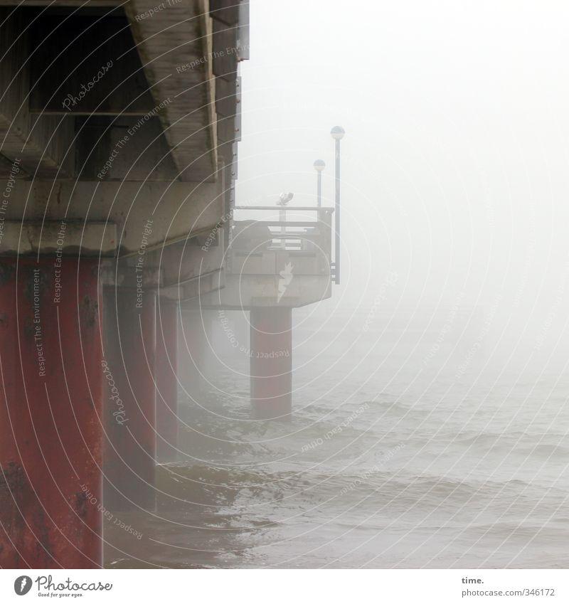 colossus Water Climate change Bad weather Fog Waves Coast Baltic Sea Bridge Architecture Sea bridge Lamp Wooden stake Concrete Platform Threat Dark Under