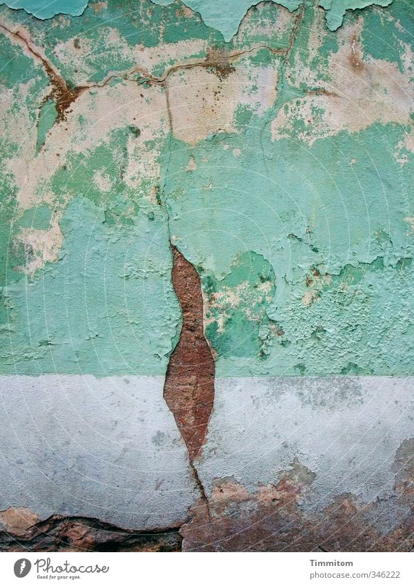 White House (Residential Structure) Wall (building) Emotions Wall (barrier) Esthetic Violet Derelict Connection Crack & Rip & Tear Figure Plaster Heidelberg Hummingbirds