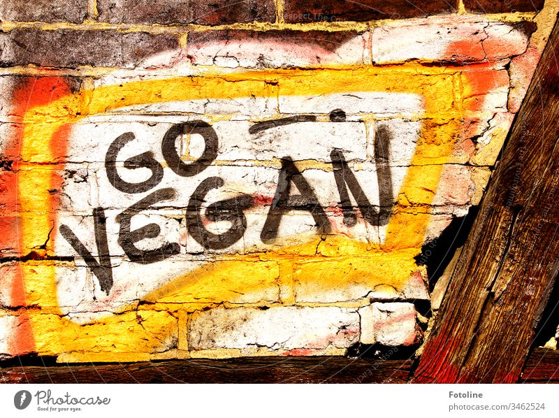 "Graffiti ""GO VEGAN"" on a wall of a half-timbered house Go Vegan Grafitti wall letters Right grey graffiti Colour Wall (building) Wall (barrier) Mural painting"