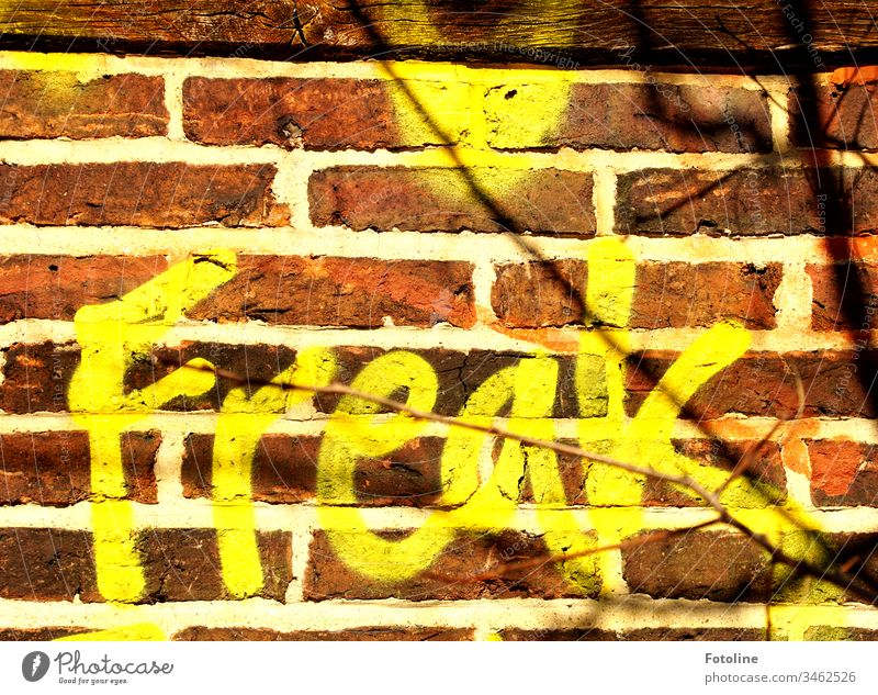Freak? - or the lettering Freak as graffiti on an old wall Wall (building) Wall (barrier) Graffiti Exterior shot Colour photo Deserted Characters Day Facade