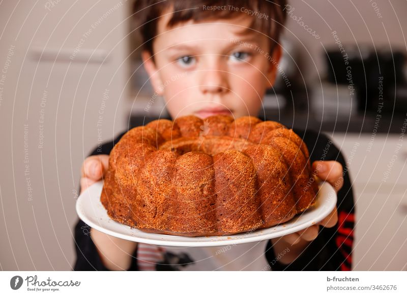 Child holding plate with cake Cake Gugelhupf Sweet Colour photo Delicious Interior shot Baked goods Candy Plate Dessert stop Fresh baked Indicate Pride Baking