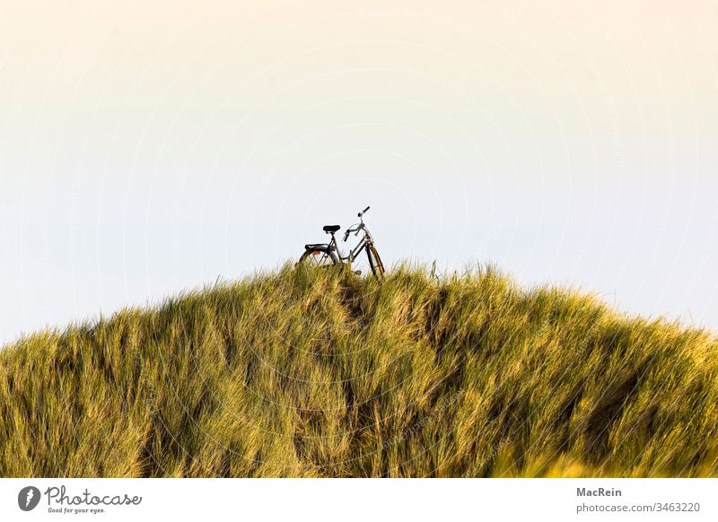 Bicycle in a dune landscape farrrad Seaweed dunes Dike North Sea Sylt Westerland Sunrise Sunset Hill vacation holidays relax Cycling tour nobody Copy Space