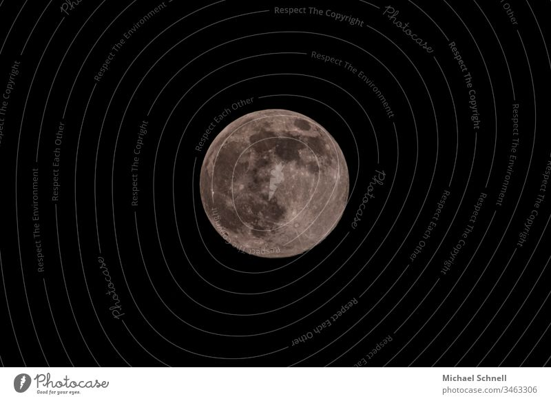Full moon in the black sky Moon Full  moon Circle Round Gray Total Circular Stars at night Night sky Copy Space bottom Copy Space top
