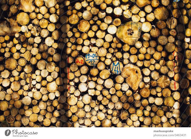 Stack of firewood Stack of wood Wood Firewood Forestry damaged wood Bark-beetle steric