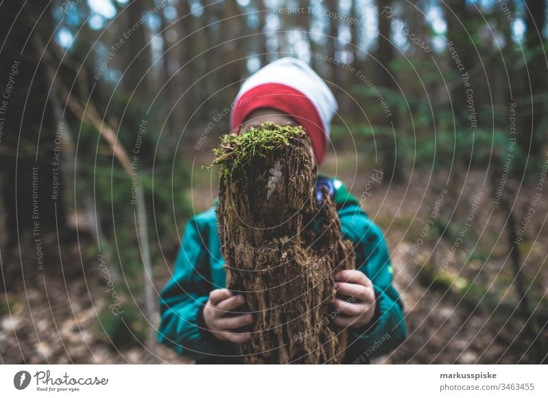 Child with deadwood in hand Green Foliage plant Nature outdoor leaves Hand Retentive stop Ground Coniferous trees Coniferous forest Pine cone pines pine forest