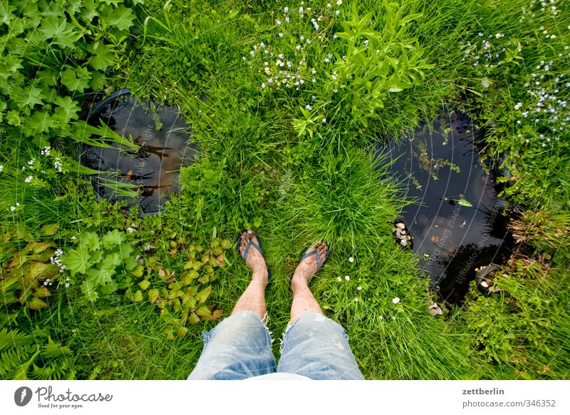 water property Relaxation Garden Human being Masculine Legs Feet Environment Nature Plant Summer Flower Grass Blossom Park Meadow Pond Stand Growth