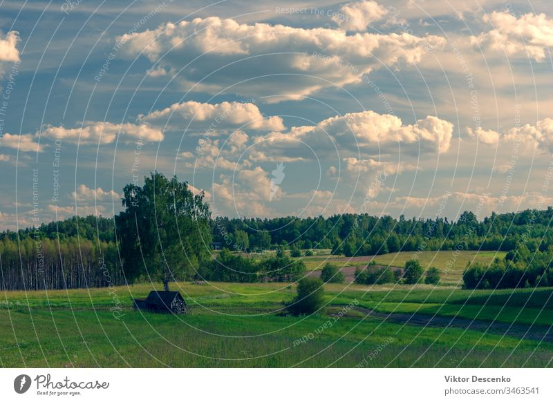 Landscape with meadows and fields of Latvia journey farmland perspective direction sunlight ground lawn scene cloudscape travel horizon dirt day grass road