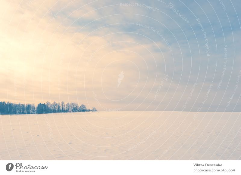 Evening over a clear field with snow december sunset countryside cold winter rural pink snowy christmas evening purple sunrise north outdoors clouds frosty