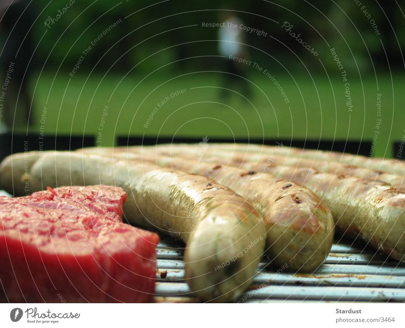 Will you grill me too, please? Barbecue (apparatus) Barbecue (event) Bratwurst Small sausage Steak Nutrition