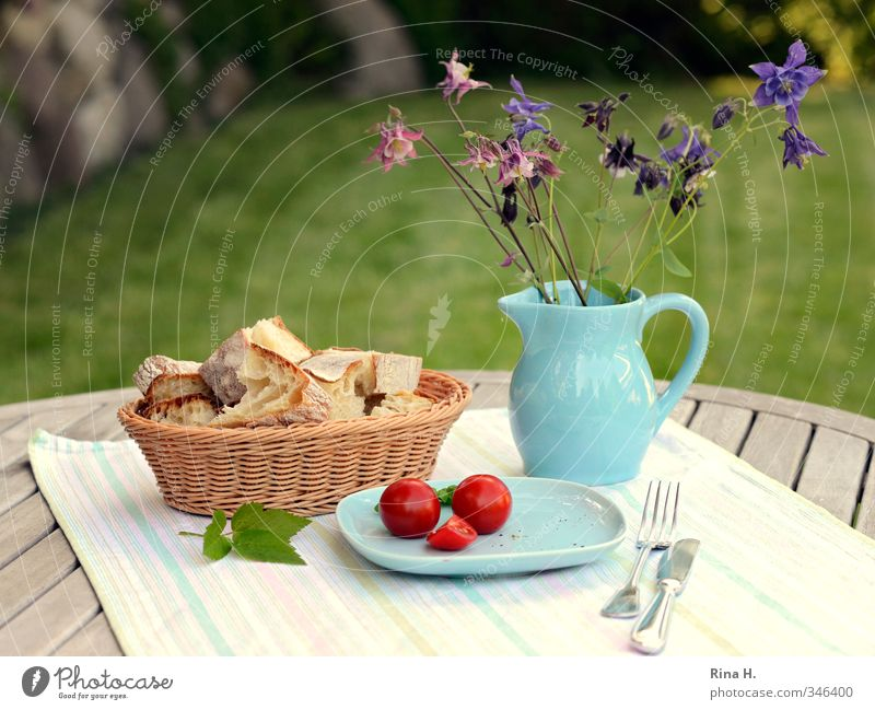 Blue Green Summer Red Flower Spring Garden Bright Food Beautiful weather Nutrition Delicious Bread Plate Knives Diet