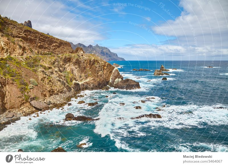 Atlantic Ocean coast of Tenerife, Spain. ocean cliff sea landscape Anaga destination scenic rock water Macizo de Anaga Canary Islands travel vacation view trip