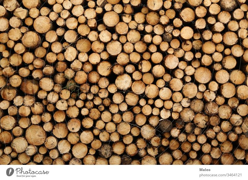 Closeup of logs of trees in nature. a lot of cutted logs abstract background bark brown chippedwood close closeup color creative design energy firewood