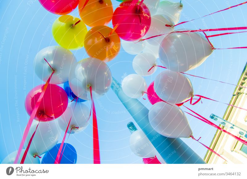 colorful balloons flying in the blue sky children happy red yellow green orange purple party play climbing sperm cell air helium gas holiday festival decoration