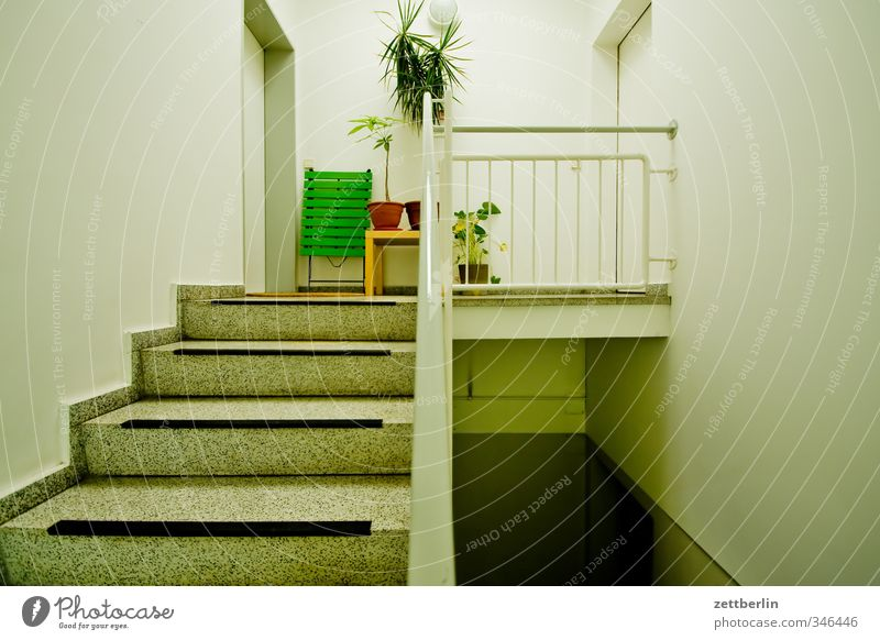 Plant House (Residential Structure) Wall (building) Architecture Wall (barrier) Building Flat (apartment) Door Stairs Living or residing Manmade structures