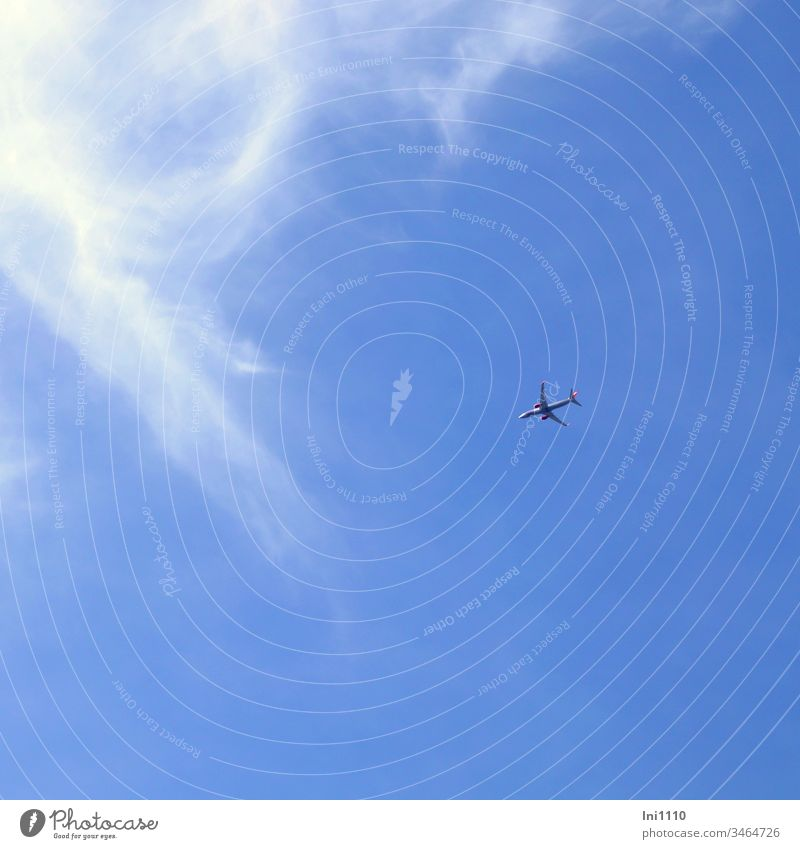 Airplane in front of blue sky with cirrus clouds Height vacation travel Freedom Blue sky Cirrus through the air in the sky sunshine scheduled plane Wanderlust