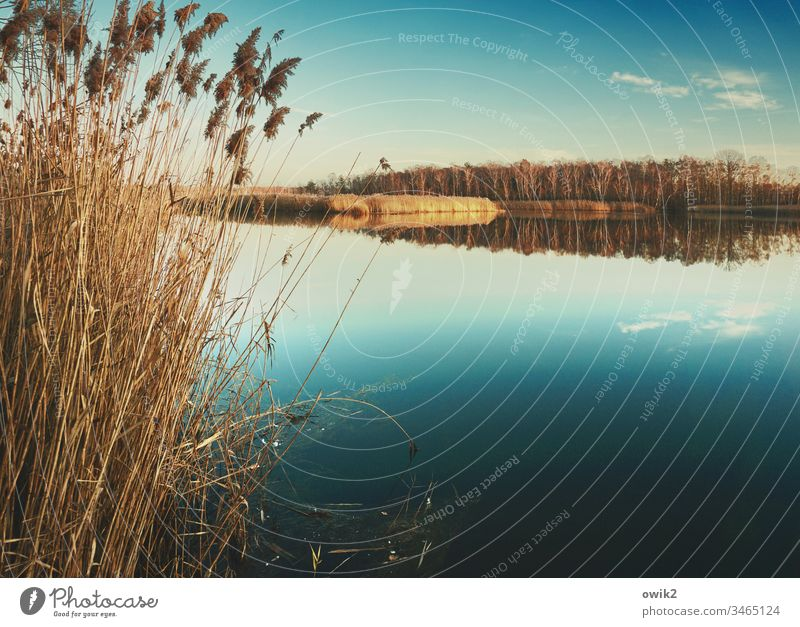 Still Water Lake Surface of water Idyll wide farsightedness Horizon Reflection Calm Nature Landscape Exterior shot Environment Colour photo Deserted
