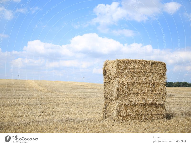 Food package Sky Stand Horizon Sunlight Clouds acre Grain Grain field Bale of straw scythed stacked Stack Hay bale Animal feed Agriculture Piece goods