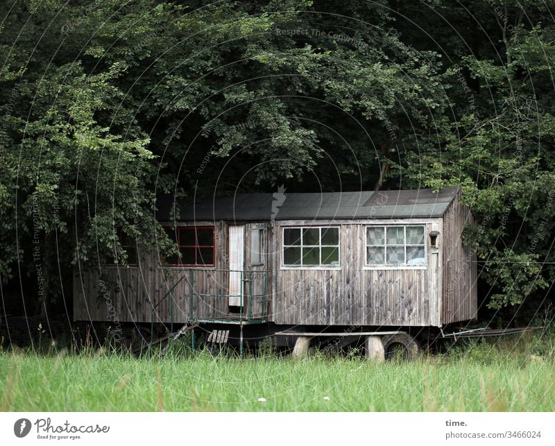 Rollin' Home Meadow Life Forest dwell Site trailer Window Wood Wheels covert Romance daylight alternative at home vacation holidays be comfortable Country life
