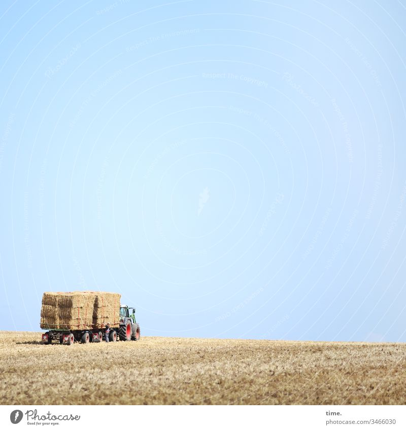 Food parcel service Sky Stand Horizon Sunlight acre Grain Grain field Bale of straw scythed stacked Stack Hay bale Animal feed Agriculture Piece goods Tractor